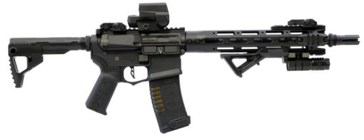 Kit Rifle Ares Amoeba 009 Airsoft
